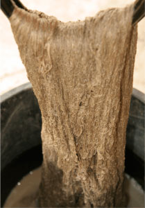 純草木染手織つむぎ(井筒屋オリジナル正絹生地)